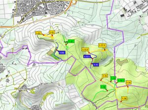 Neue legale Mountainbike Trails auf dem Kappelberg in Fellbach beschlossen